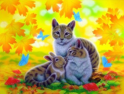 Обои Кошка, кот и кролик сидят на поляне с растущими мухоморами на фоне голубых бабочек и осенних листьев