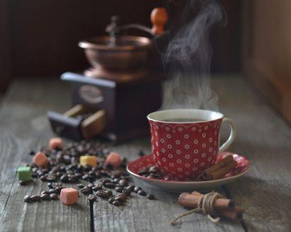 Обои Кофейная кружка, зерна кофе, кофемолка, корица и кусочки сахара на столе