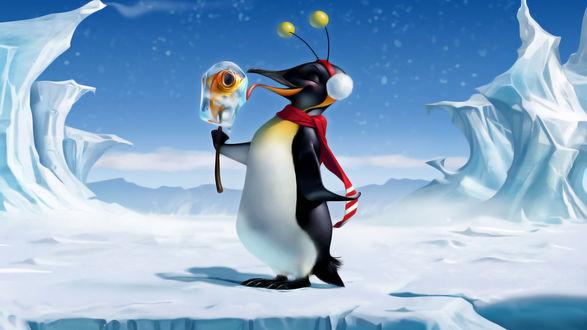 Обои Довольный пингвин в шарфике и наушниках, лижет как мороженое, кусок льда на палочке, с вмерзшей рыбкой