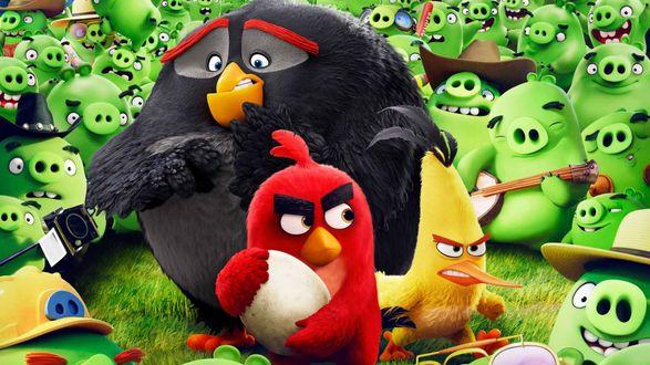 Обои Отчаянные Ред, Чак и Бомб против зеленых свинок, мультфильм Angry Birds в кино / Злые птички в кино