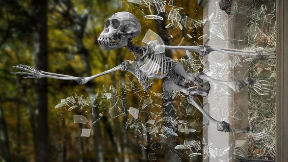 Обои Скелет выпрыгивает из окна, разбив стекло на мелкие осколки