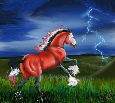 Обои Красный конь встал на дыбы, испугавшись молнии, by Sdina