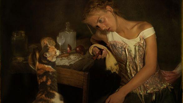 Обои Кошка с удивлением смотрит на опьяневшую девушку, сидящую за кухонным столом, с ножом в руке