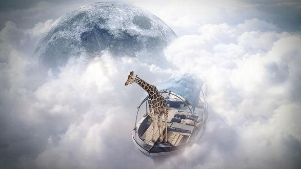 Обои Жираф плывет в лодке по облакам, вокруг планеты
