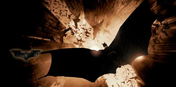 Обои Персонаж комиксов Бэтмен / Batman летит между небоскребов в сопровождении летучих мышей