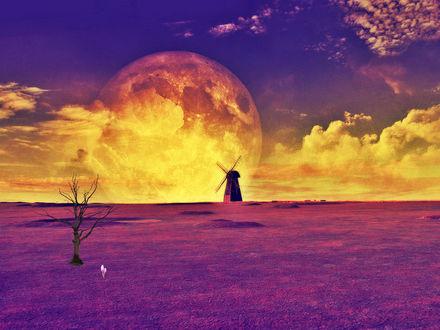 Обои Лавандовое поле, засохшее одинокое дерево, ветряная мельница, на фоне гигантской планеты в облачном небе на закате дня, фантасмагория