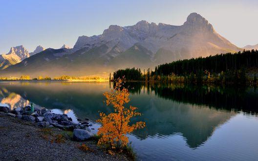 Обои Небольшое озеро у гор и леса