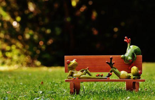 Обои Игрушечные лягушата на скамейке, на фоне травы и листьев