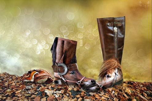 Обои Гибрид сапог и лошадиных морд на опавших листьях, фон, рендеринг