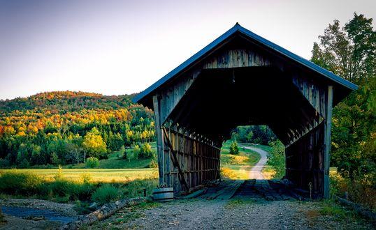 Обои Дорога через деревянный туннель на фоне осенних деревьев, by David Mark