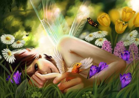 Обои Фея с птицей в руке лежит в траве среди цветов
