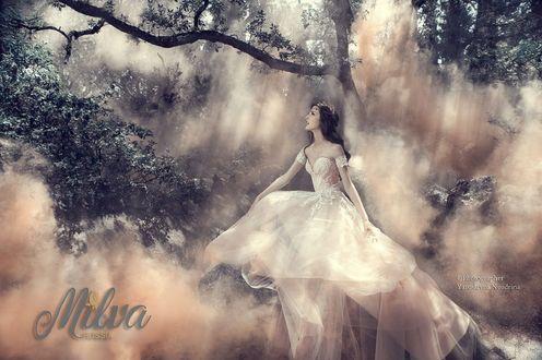 Обои Девушка в пышном платье в лесу, фотограф Yaroslavna Nozdrina