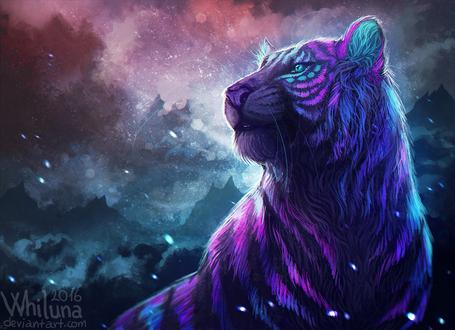 Обои Разноцветный тигр, by Whiluna