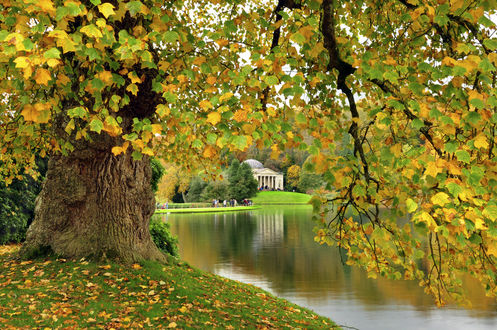 Обои Stourhead, England / Сторхед, Англия, парк, пруд, павильон, осень