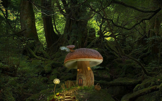 Обои Гриб-домик с фонарем-одуванчиком у входа, среди дремучего леса, by Avi_li