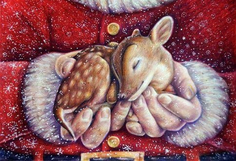 Обои Маленький олененок спит в руках Санта Клауса