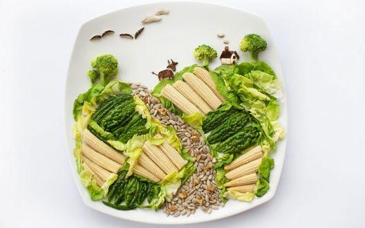 Обои Кукуруза, салат, семечки, брокколи и зеленый перец разложены на тарелке в виде сельского пейзажа