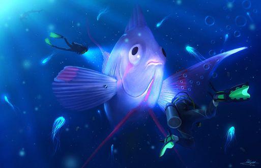 Обои Аквалангисты под водой смотрят на огромную рыбу, by PedroDeElizalde