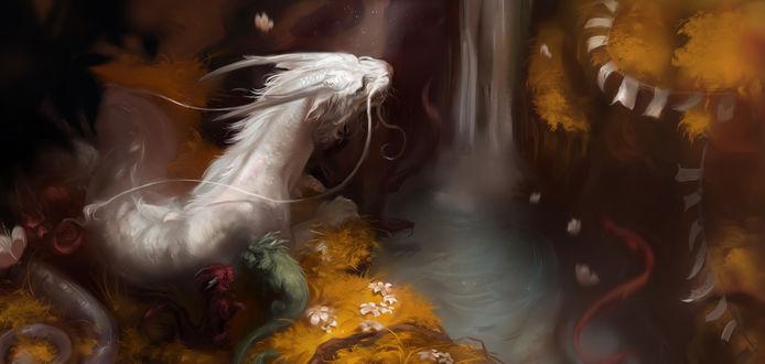 Обои Белый, красный и зеленый драконы на берегу небольшой речки с водопадом, в который плавает их водный собрат, by kep90