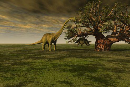 Обои Доисторические животные на поле под большим деревом, by David Mark