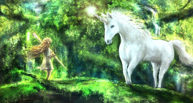Обои Эльфийка с посохом в руках стоит напротив единорога на лесной поляне