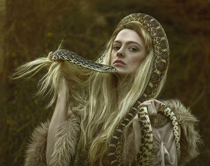 Обои Девушка со змеей, фотограф Agnieszka Lorek