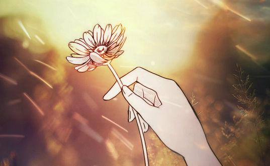 Обои Женская рука с цветком