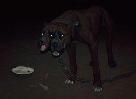 Обои Фантастический двухглавый пес на цепи, с горящими глазами, стоит рядом с миской