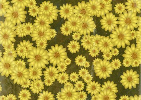 Обои Множество желтых нарисованных цветов