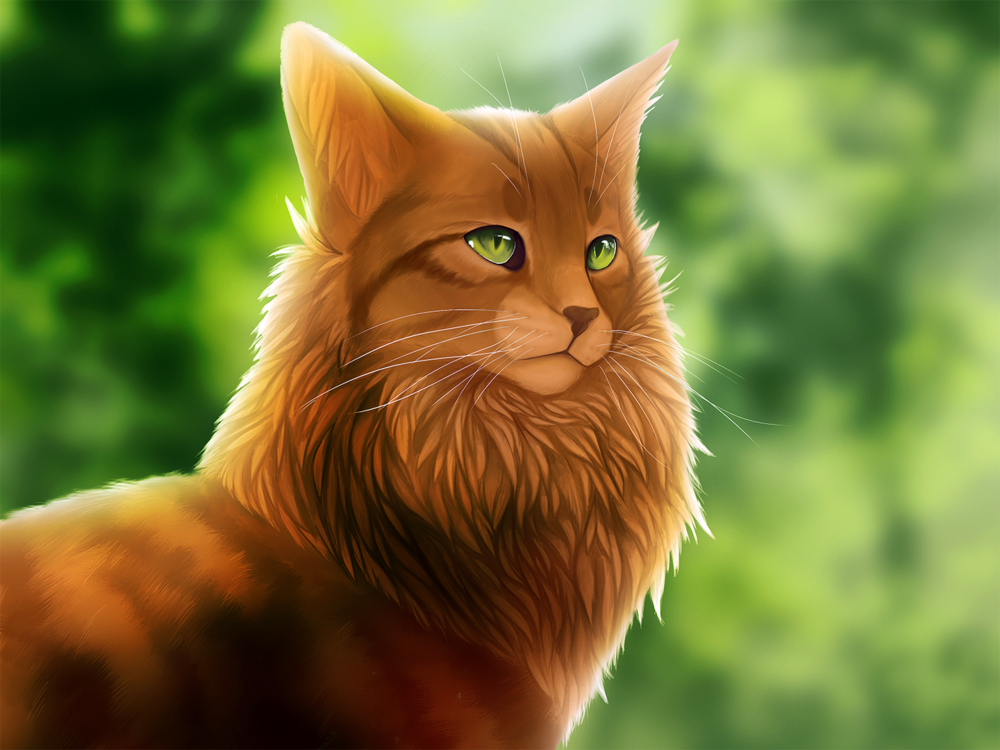 угодить картинки рыжего кота с зелеными глазами мультяшного цель делать отпечатки