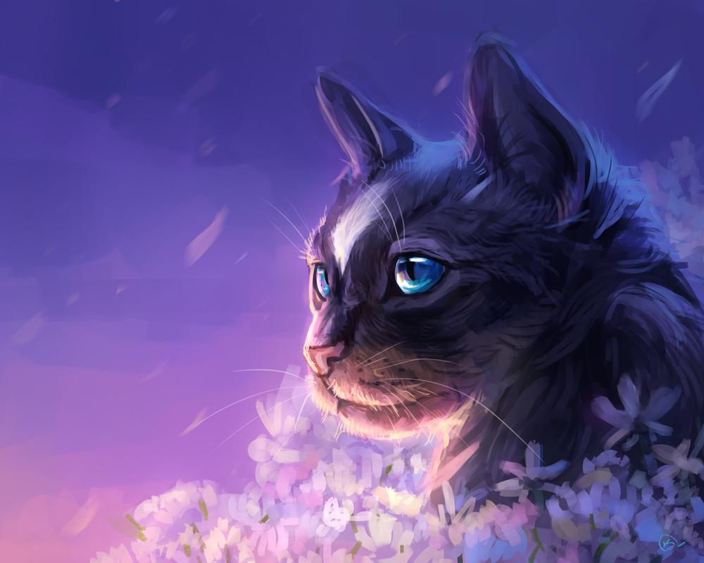 Обои цветы, Кошка. Кошки
