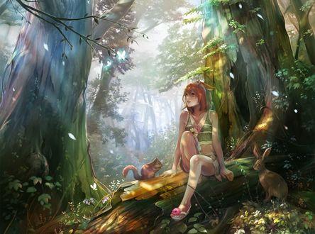 Обои Девушка с белочкой и кроликом сидит в лесу на бревне