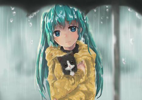 Обои Грустная Vocaloid Hatsune Miku / Вокалоид Хатсунэ Мику с котенком на руках под дождем