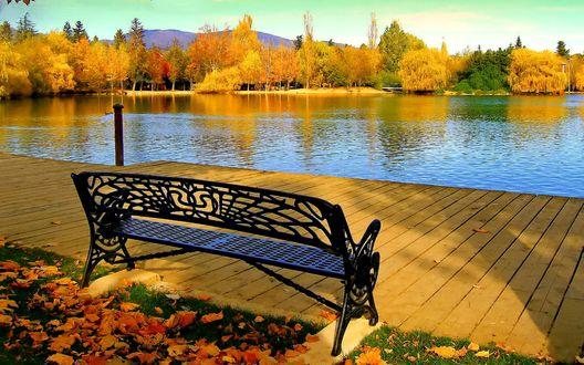 Обои Скамейка на траве с осенними листьями на берегу озера на фоне осенних деревьев