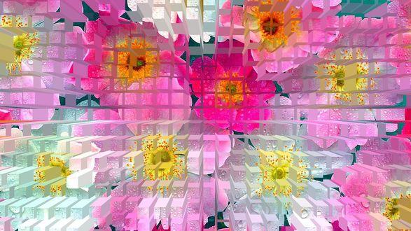 Обои Цветочная мозаика с капельками воды из прямоугольников