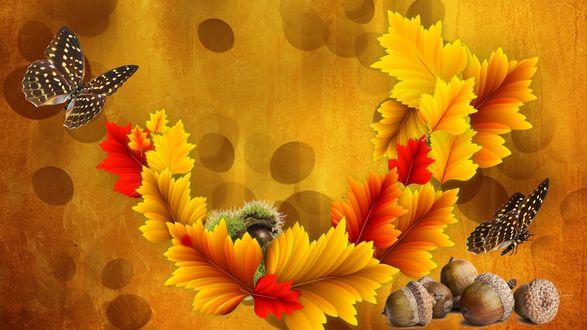 Обои Осенние листья, бабочи и лесные орехи