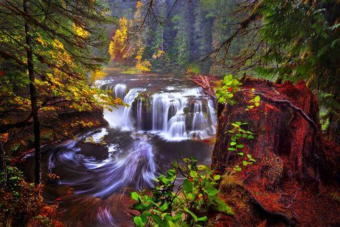 Обои Водопад на фоне осеннего леса