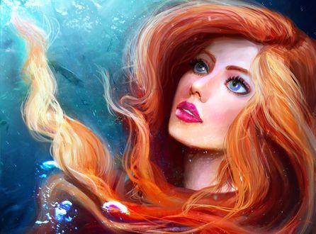 Обои Ariel / Ариэль из мультфильма Little Mermaid / Русалочка, смотрит вверх, by abeer malik