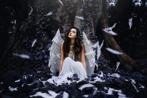 Обои Девушка с крыльями ангела сидит на корне большого дерева