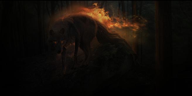 Обои Огненный волк, by xXNamaste