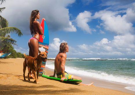 Обои На песчаном пляже около моря стоит девушка с доской для серфинга, парень сидит на песке на доске и с ними рыжая собака, by Aleksandr MAVRIN