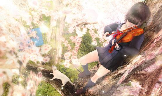 Обои Девушка играет на скрипке, стоя на ветке цветущего дерева, рядом стоит белая кошка