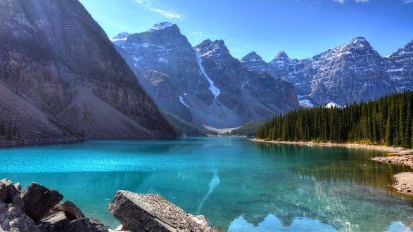 Обои Озеро у заснеженных гор и леса