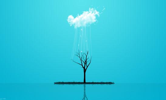 Обои Дождь из облака идет на засохшее деревце (Alive)