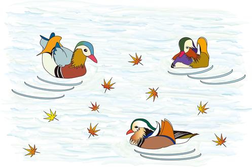 Обои Утки плавают в воде, покрытой осенними листьями