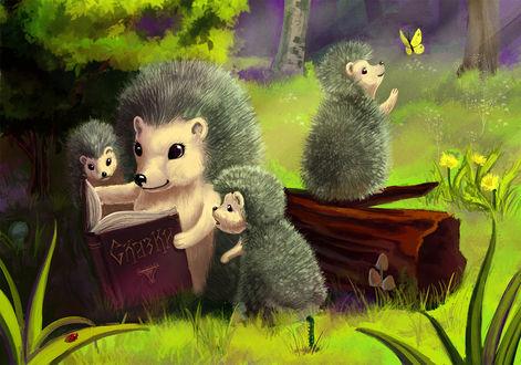 Обои Ежик читает ежатам книжку, by Natalliel