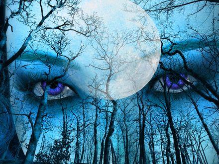 Обои Глаза девушки на фоне луны и деревьев