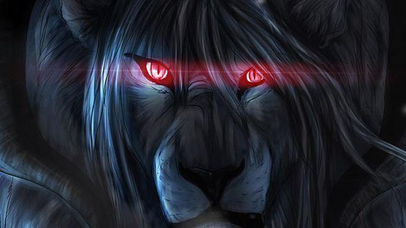 Обои Лев с мистическим взглядом красных глаз