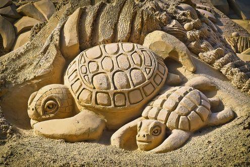 Обои Черепашки и горы сделанные из песка