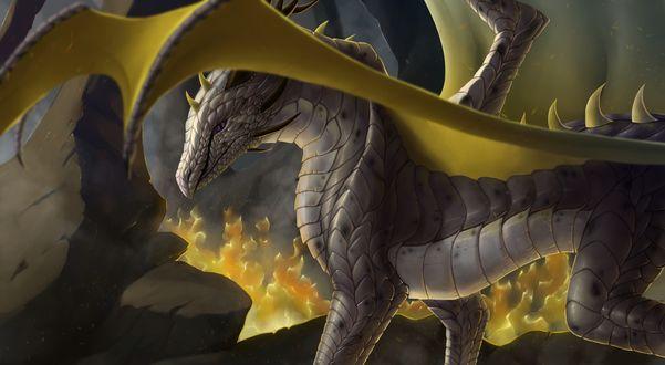 Обои Дракон с желтыми крыльями
